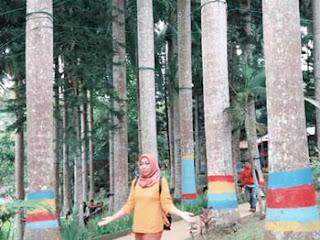 Lies di hutan Desa Kemiren