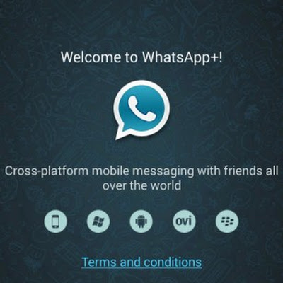 whatsapp pour lg c399