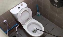 Πήγε στην τουαλέτα και βγήκε με έναν πύθωνα «καρφωμένο» στο πέος του