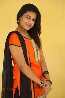Telugu Actress Chandana Stills in Salwar Kameez at Karam Dosa Movie Press Meet  0007.JPG
