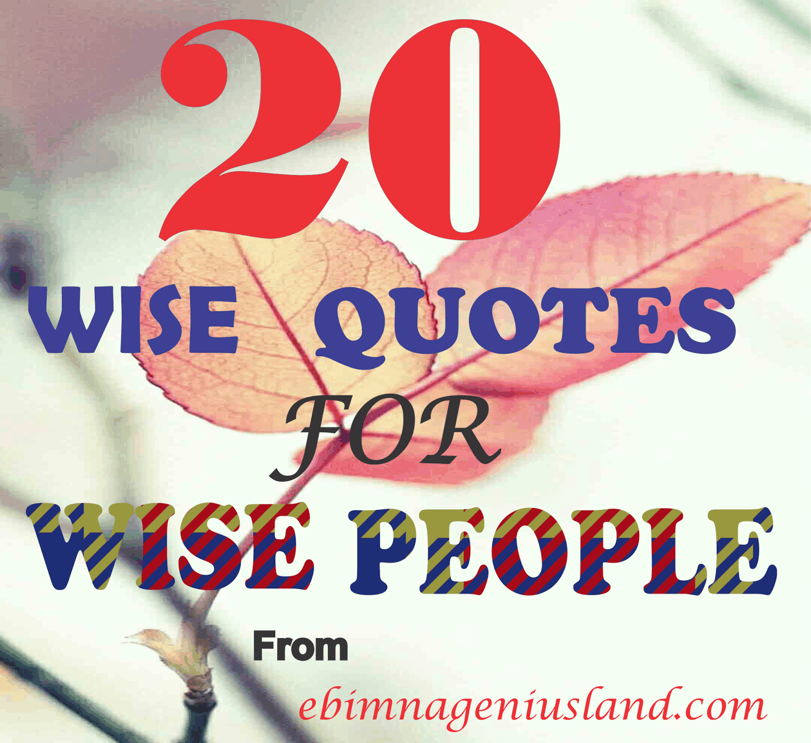 20 Wise Quotes For People Who Choose To Be Wise