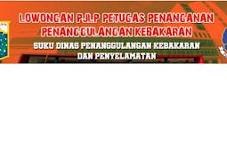 Lowongan Kerja Dinas Penanggulangan Kebakaran dan Penyelamatan Provinsi DKI Jakarta