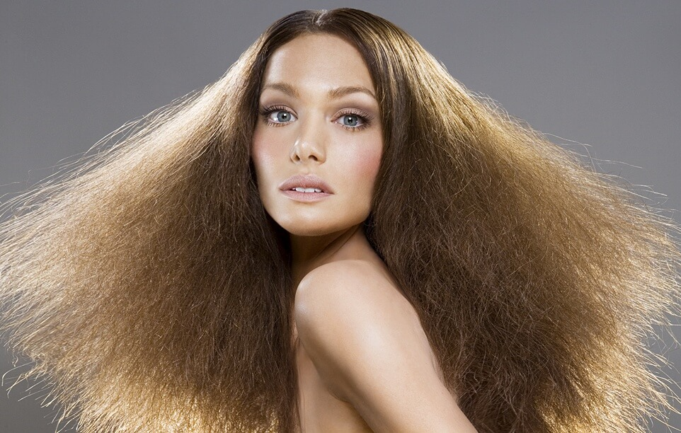 Cheveux defrises fins et cassants