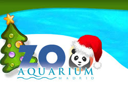 Talleres de Navidad 2011/2012 en el Zoo de Madrid