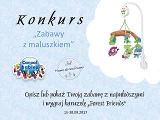 https://mamadoszescianu.blogspot.com/2017/09/konkurs-canpol-babies-zabawy-z.html