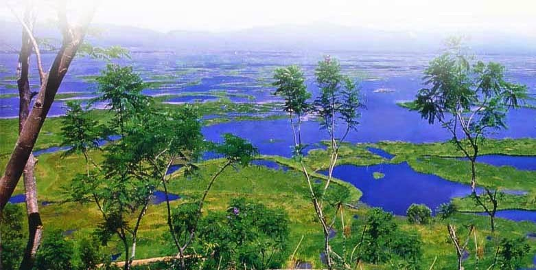 Tourist Places In India Loktak Lake Places To Visit In North East India