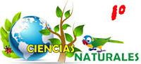 http://capitaneducacion.blogspot.com.es/search/label/1%C2%BA%20PRIMARIA%20-%20CIENCIAS%20DE%20LA%20NATURALEZA