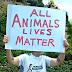 Οι ζωές όλων των ζώων αξίζουν...