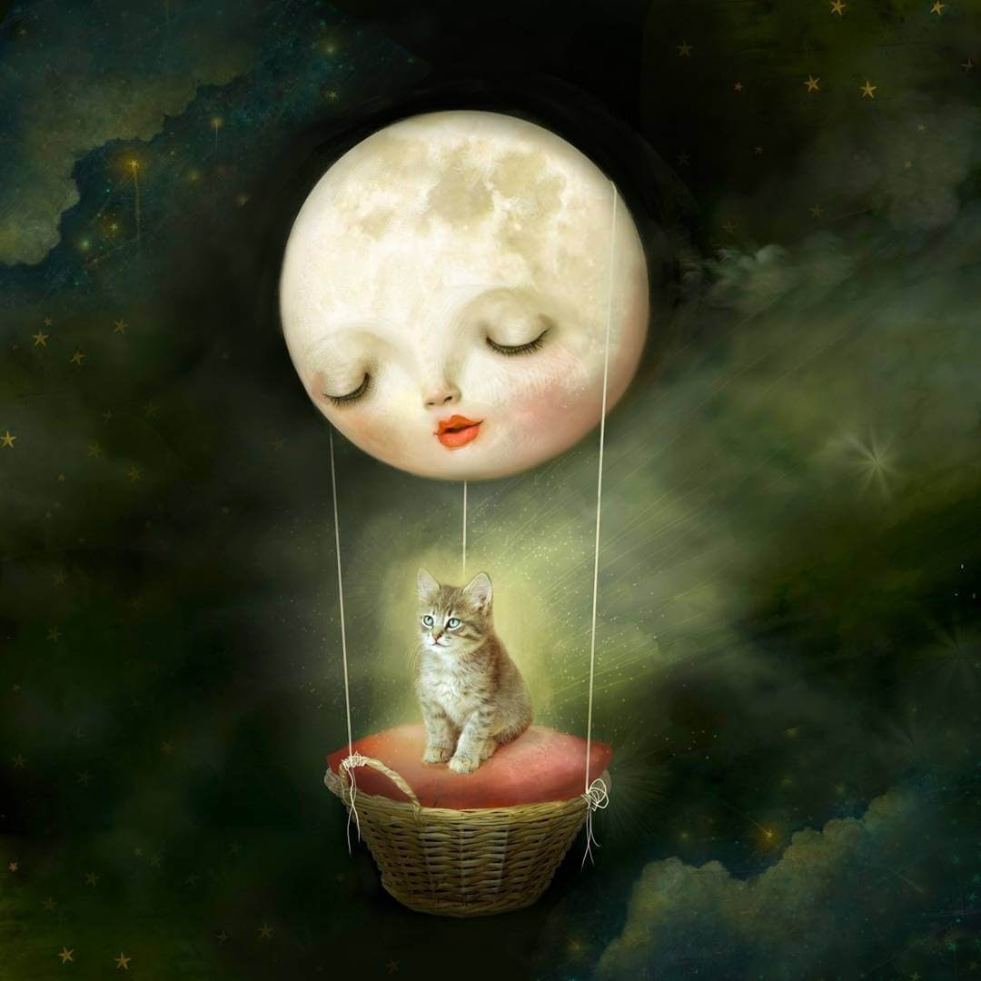01-Cosmic-Kitten-Lisa-Falzon-Fantasy-Digital-Art-with-a-Sprinkle-of-Surrealism-www-designstack-co