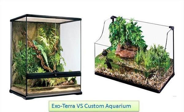 Harga Bahan Untuk Membuat Aquascape Paling Dicari