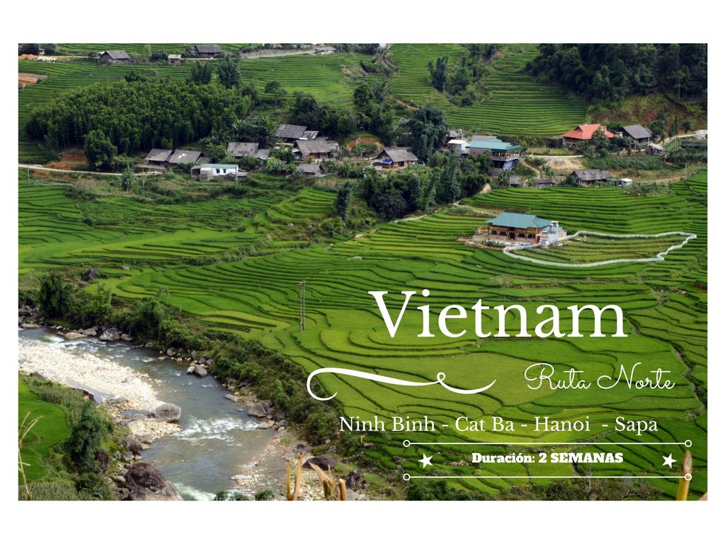 Imagen de arrozales Vietnam