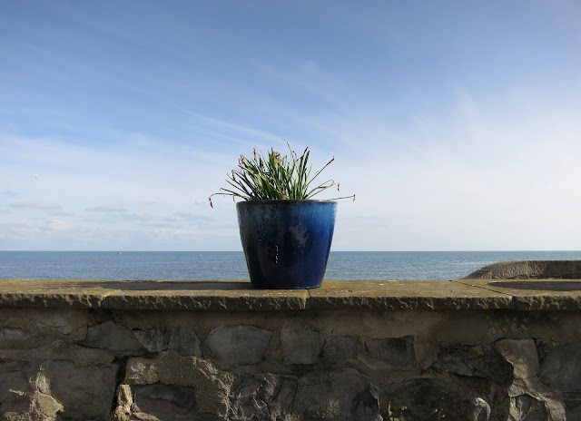 Ceramic Pot on Wall by Sea Containing Leaves of Dead Spring Flowers.