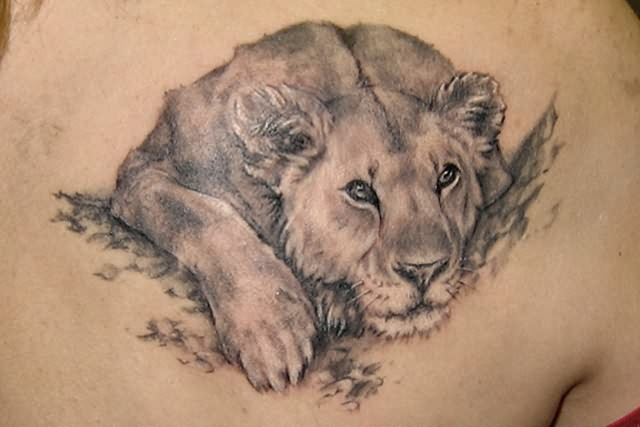 Lion Tattoos-Roaring Lion-Lion Of Judah ~ Tattoo Pictures