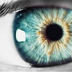 目に輝きがある霊感の高い人