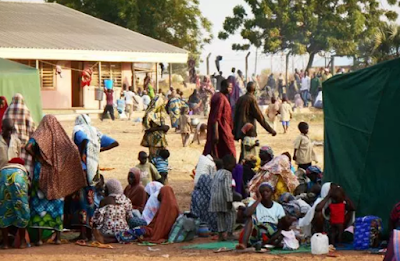 weed sellers arrested idp camps borno