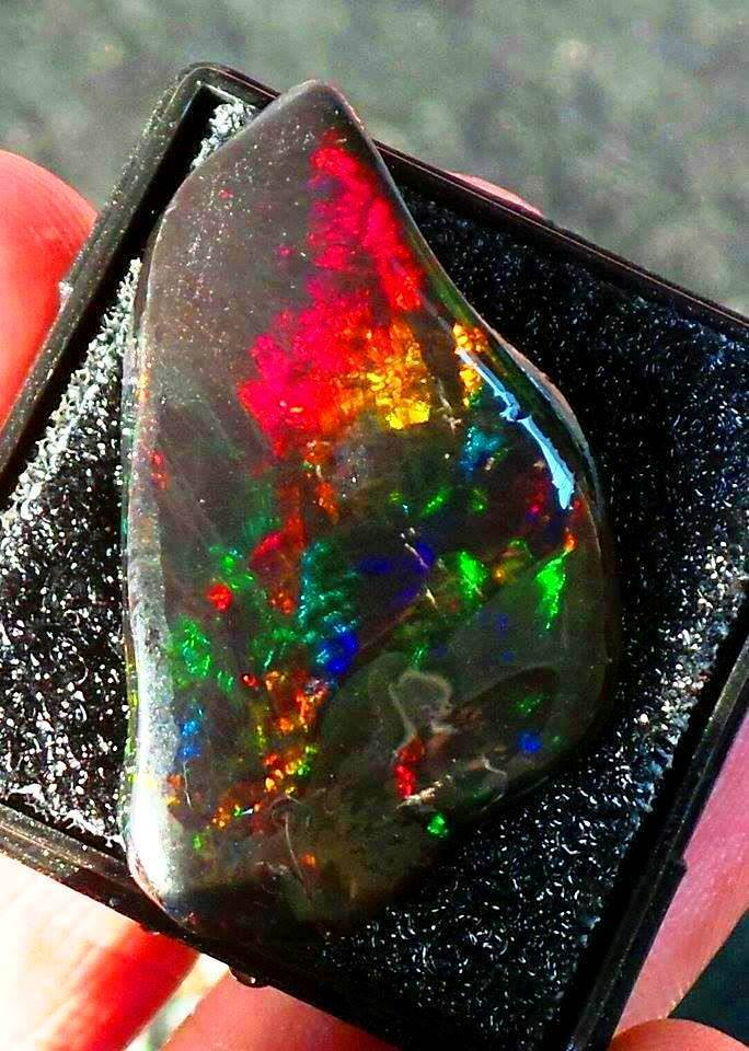 of Opal With Photos