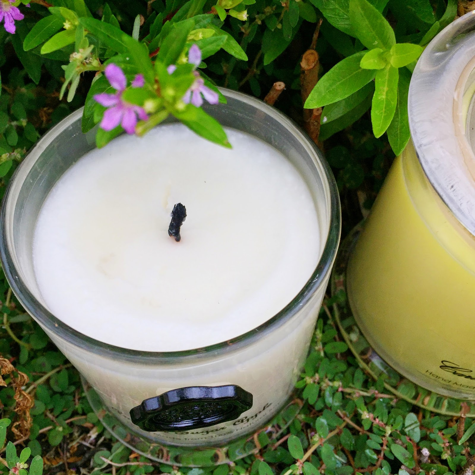 Most Fragrant Candles Organic Spirit Fragrant Flame Soy Candles Exquisitely
