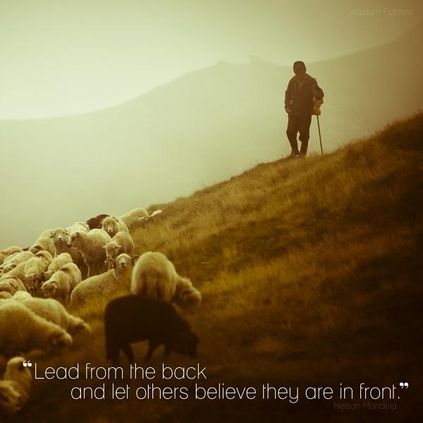Nelson Mandela Quotes   IMQFT   Wisdom Fighters