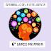 FICHAS PARA EL DESARROLLO DE LA INTELIGENCIA 6° PRIMARIA