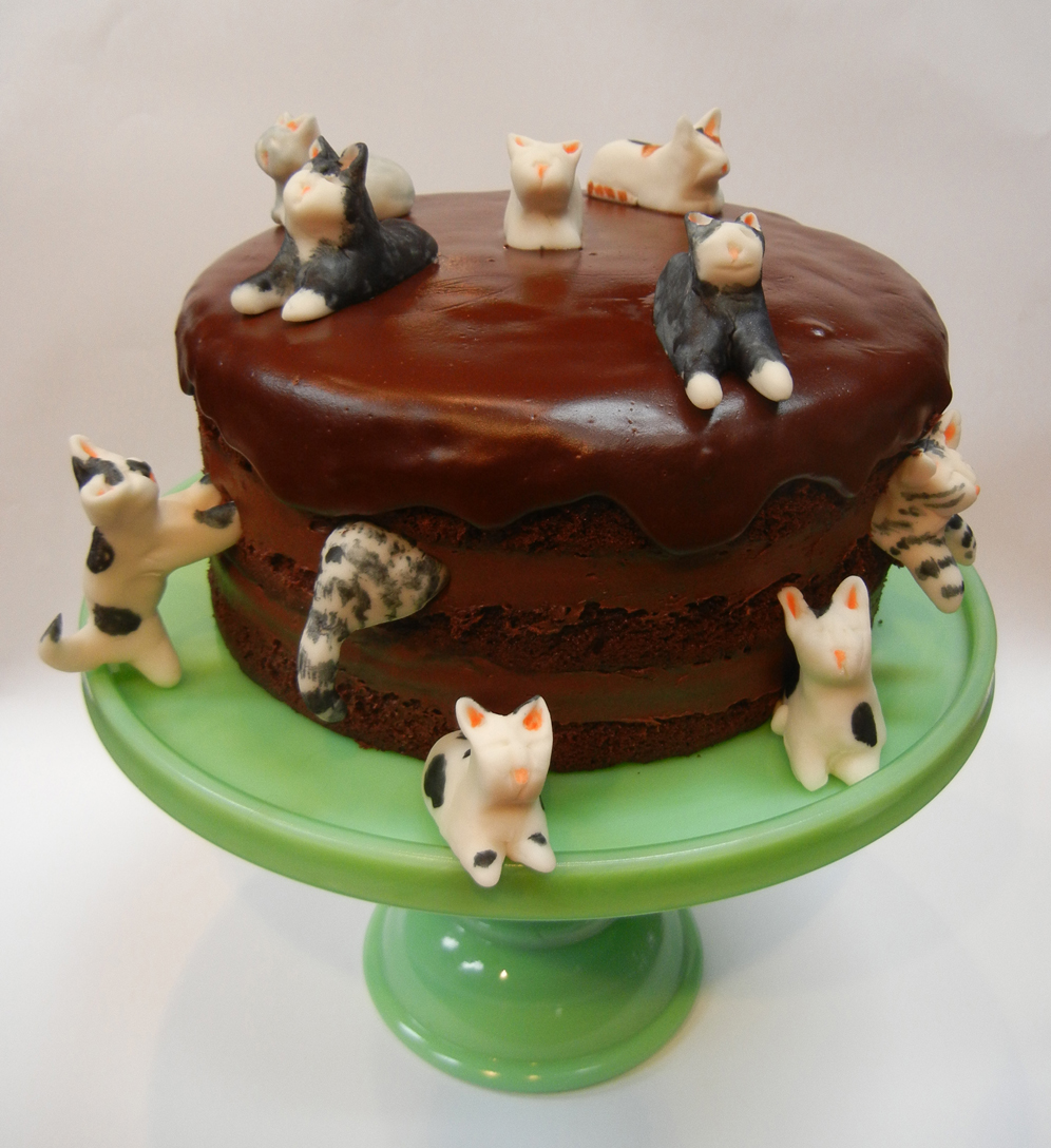 cat birthday cake ronna s happy birthday richard x 2 2514