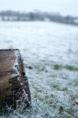 snow path field