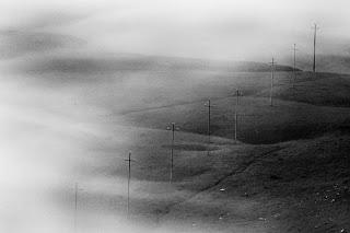 Foto blanco y negro