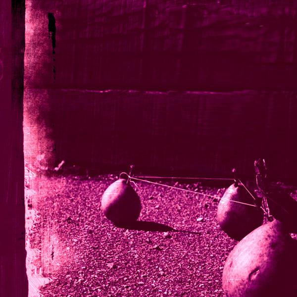 Holger Czukay / Les Vampyrettes - The Photo Song / Biomutanten