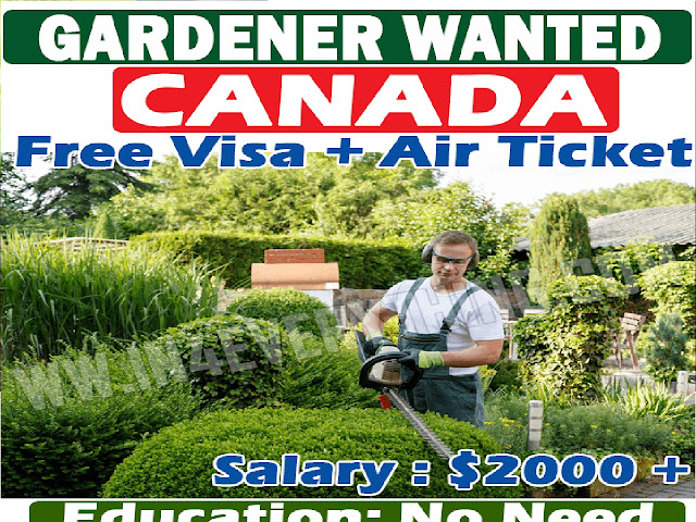 Vegetable Farm Worker hiring for Canada !! Apply Now !!