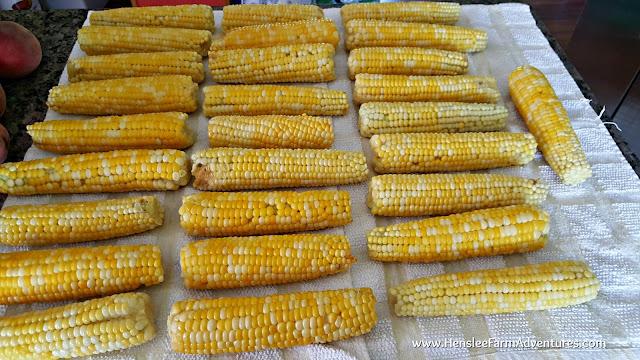 Freezing Corn for Winter  www.HensleeFarmAdventures.com