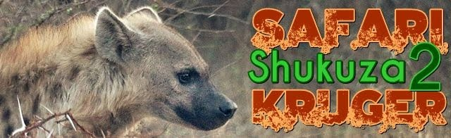 Safari-Kruger-Día-shukuza