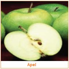 Apel - Pome - Karakteristik Hasil Samping Buah
