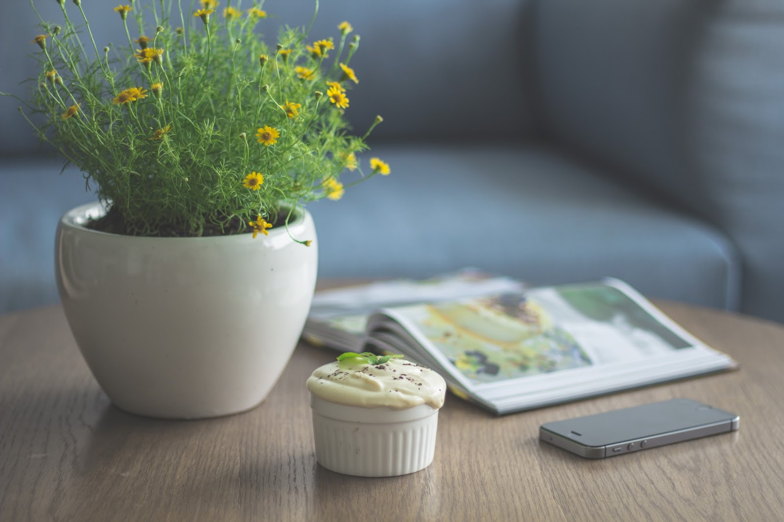 plant pot, dessert, book and mobile phone on table