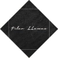 Pilar LLamas - Almamodaaldia