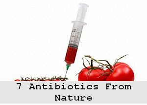 https://foreverhealthy.blogspot.com/2012/04/let-food-be-your-medicine-7-antibiotics.html#more