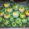 Ingatkah kalian bahwa buah dan sayur sangat dianjurkan alasannya ialah baik untuk  30 Manfaat Buah Mangga untuk Kesehatan dan Kecantikan