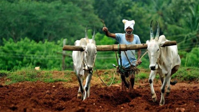 Essay on farmers problems in hindi