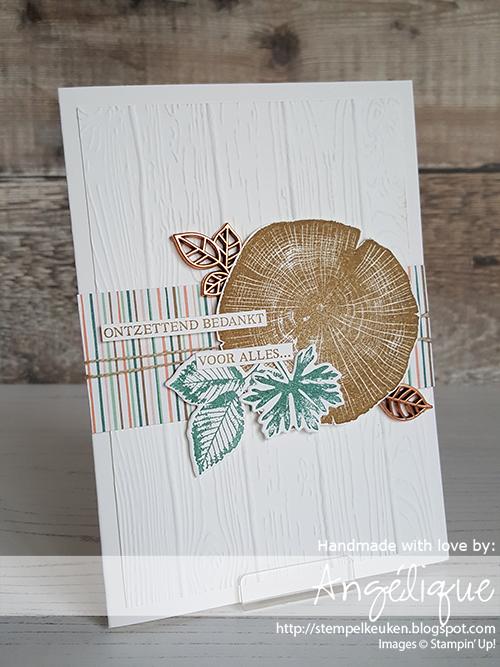 de Stempelkeuken Stampin'Up! producten koopt u bij de Stempelkeuken #stempelkeuken #stampinup #stampinupnl #stampinupdemonstrator #stampinup30 #rootedinnature #natuur #puurnatuur #wandering #thankyou #bedankt #gratitude #stempelen #cardmaking #papercrafting #kaartenmaken #handlettering #hobbymaterialen #bigshot #dsp #echtepostiszoveelleuker #slakkenpost #snailmail #postcrossing #handmadecards #handmade #zelfgemaakt #diycard #kaartenmakenhobby #patternedpaper #cardmakinghobby #creatiefmetpapier #denhaag #scheveningen #westland #rotterdam #kijkduin #monster