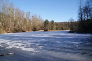 Der zugefrorene See der Grube Cox aus einer anderen Perspektive. Auf der Eisfläche liegt Schnee und ein Ast.