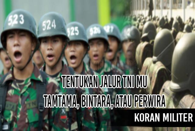 Jalur Pendaftaran TNI Dan Perbedaan Tamtama, Bintara, Dan Perwira
