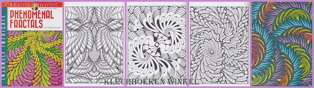 kleurboeken voor volwassenen, kleurboek  phenomenal fractals