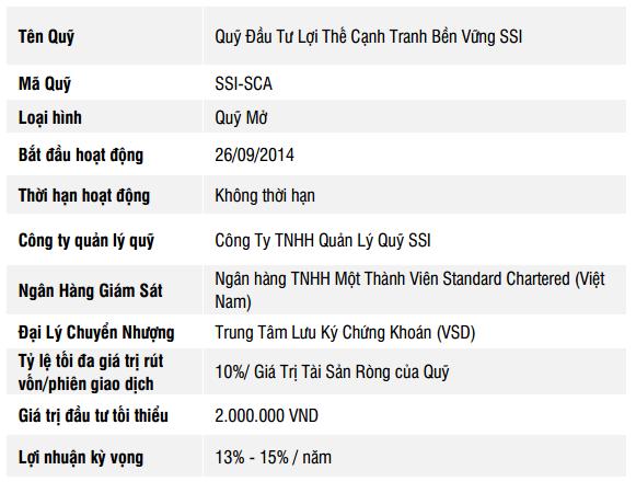 Quỹ đầu tư Cổ phiếu SSI (SSI-SCA)