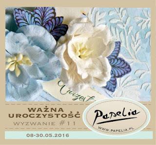 http://papeliapl.blogspot.ie/2016/05/wyzwanie-11-wazna-uroczystosc.html
