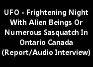 UFO - Frightening Night With Alien Beings Or Numerous Sasquatch In Ontario Canada (Audio Interview)
