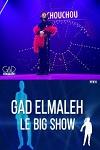 Gad Elmaleh, le big show