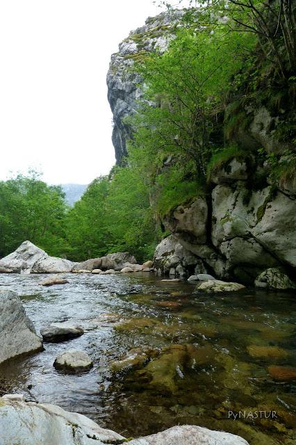 Río Ponga - Asturias