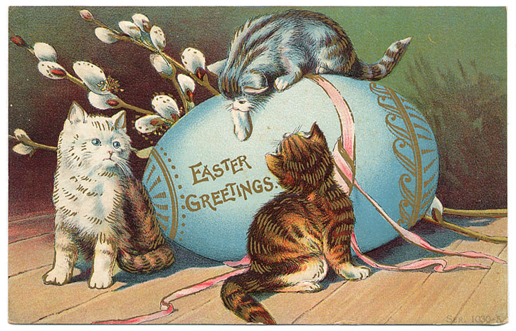 easter backgrounds cat images - photo #11