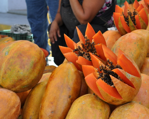 Fresh papayas in Oaxaca, Mexico, inspiration for Deep Mexico, ingredient-driven Mexican meal prep ♥ KitchenParade.com.