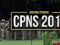 Persiapkan Berkas !! Penerimaan CPNS 2018 Bakal Di Buka Juli, Ini Syarat Yang Harus Disiapkan