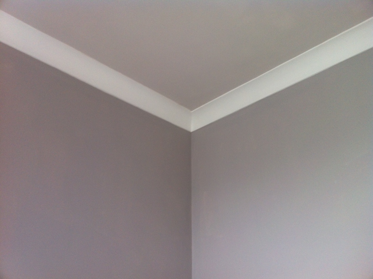 David Dangerous My Grey Ceiling And Grey Walls