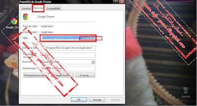 الحل النهائي لرسالة الخطأ 0 * c00007b في متصفح جوجل كروم